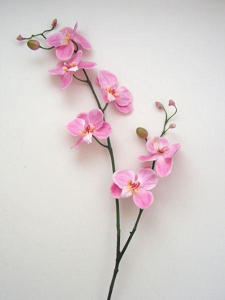 Шаг 1 - Орхидея из бисера