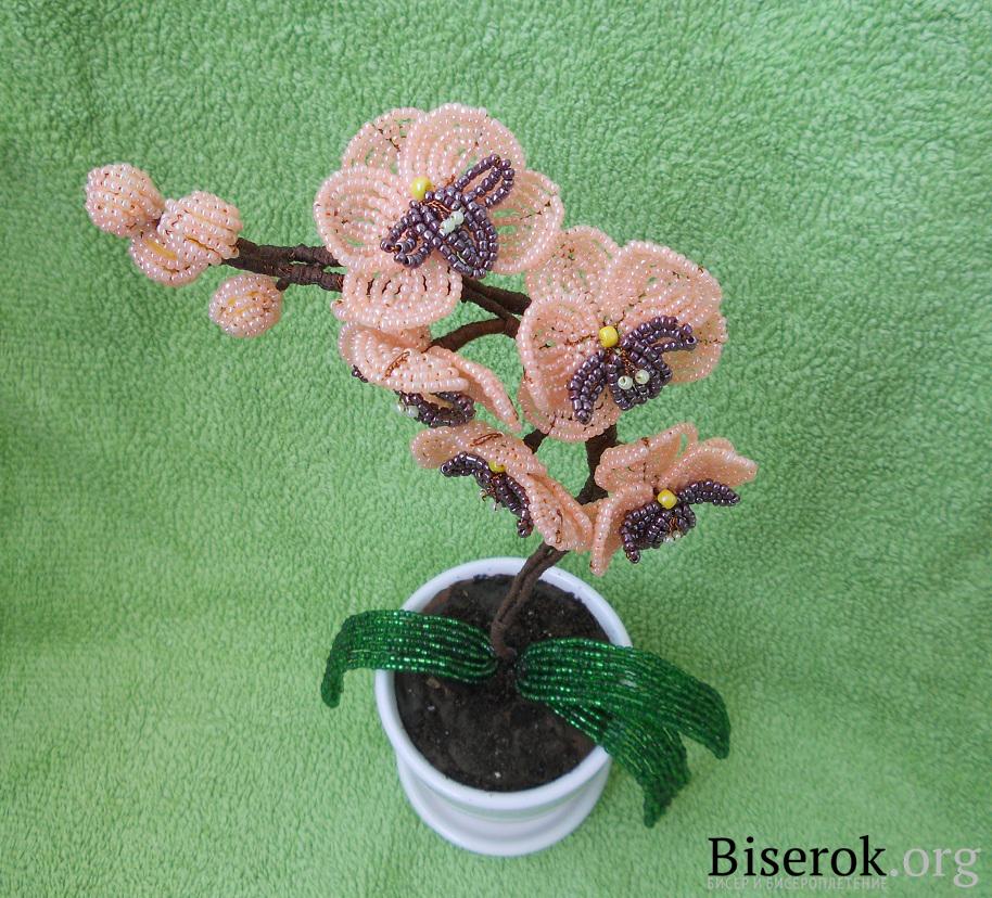Источник: biserok. org